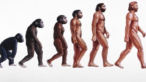 复旦大学成立人类遗传学与人类学系  重构民族类群的演化历史