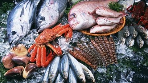 年货单上的进口海鲜 你可分得清油鱼和银鳕鱼吗?