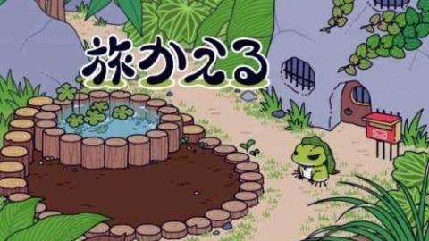 七夕会·时尚|青蛙去哪了