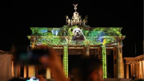 一年一度灯光节:柏林华丽换装 熊猫爬上门楣