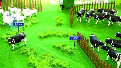 """【新时代新作为新篇章】上海造""""北斗数字牧场"""" 用卫星帮牧民赶牛羊 每户降耗超万元"""