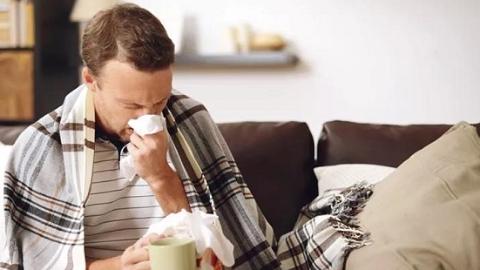 敷贴调治过敏性鼻炎,急不得!