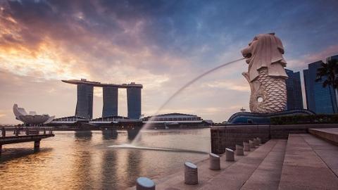 80余家新加坡企业将组团参加首届中国国际进口博览会