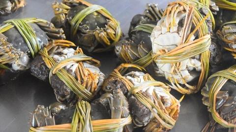 品蟹季,大闸蟹怎么挑、吃蟹有何讲究,一文全知道!