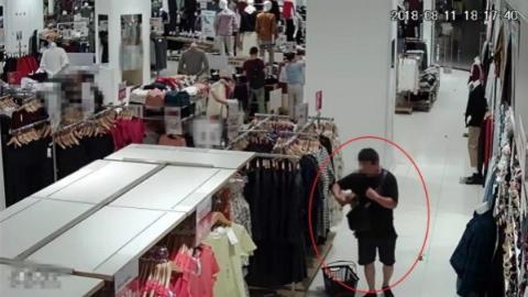 """小蟊贼""""独爱""""快时尚品牌 按目录偷指定款式"""