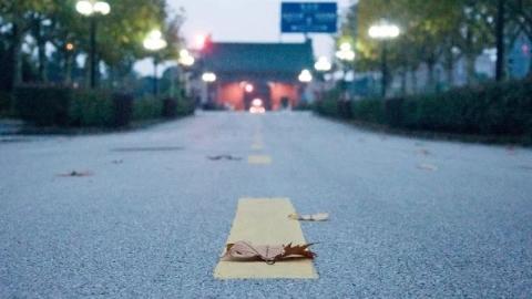 """27条""""有故事""""的上海高校小路,每一步都是青春的气息(上篇)"""