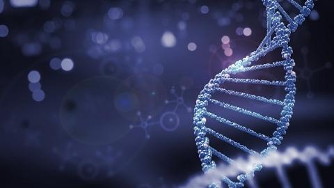 同济团队发现cGAS酶有致癌风险 将助力开发新型抗肿瘤药物