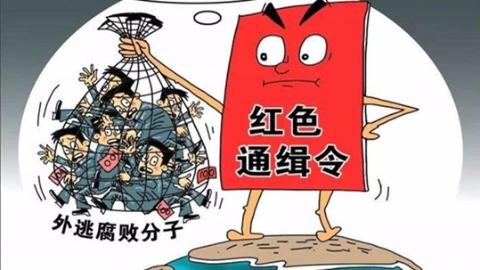 上海警方成功劝返外逃12年红色通告嫌疑人