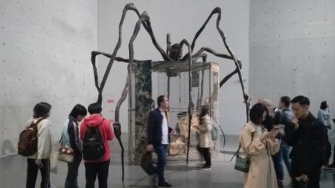 永恒的线无限的网,她把蜘蛛比作母亲
