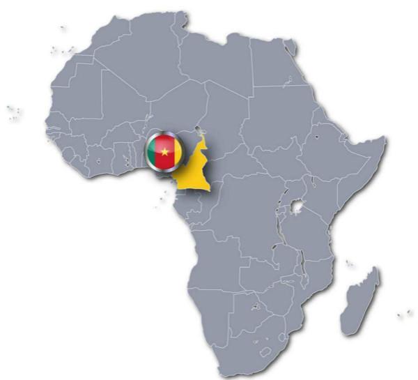 喀麦隆一所中学82人遭绑架