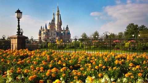 中国将成世界最大主题娱乐市场 2020年游客量有望达2.3亿人次