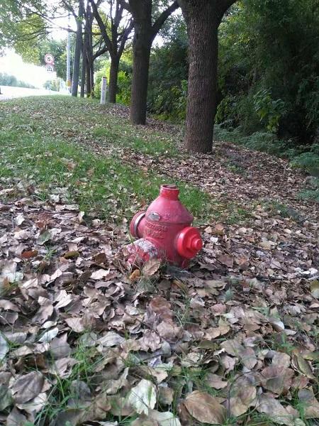 消防栓被土壤埋没.jpg