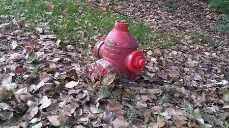 """消防栓半身被""""埋""""土中  市民担心出水难"""