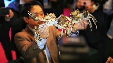 """""""蟹王""""""""蟹后""""比以往轻,可河蟹整体个头大了!你猜,它俩各有多重?"""