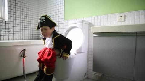 世界厕所日| 莫道此物无用 且看来客多情