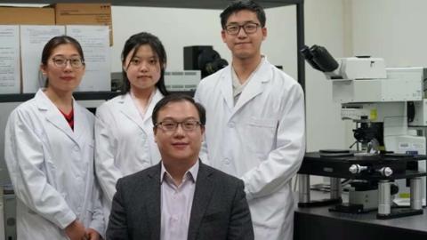 """全球首次!上海青年科学家全程高清""""直播""""造血干细胞""""回家""""之路"""