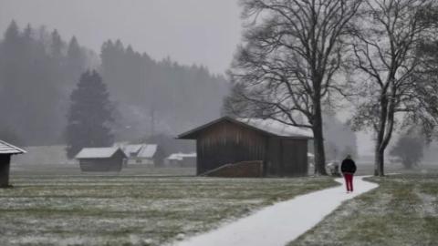 德国多地迎来今冬初雪