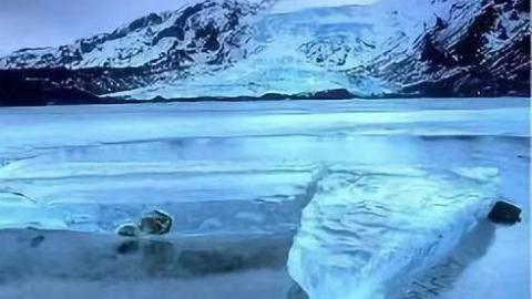 "NASA警告创纪录低温将临 加拿大会冻成""美丽童话"""