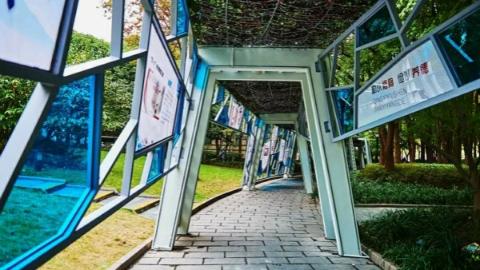 """散步夜跑有了新去处!闵行首个24小时""""不打烊""""城市公园开放"""