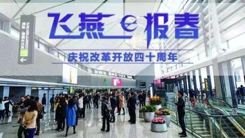 """飞燕报春 上海东西两大机场""""比翼齐飞"""""""