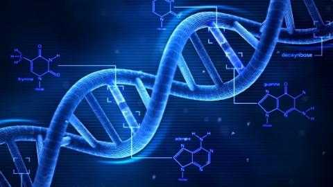 """权威部门回应""""基因编辑婴儿""""事件 专家:人类社会会允许""""基因人""""出现吗?"""