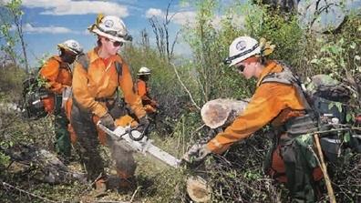 环球社会 | 加州山火中的囚犯消防员