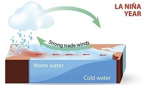 厄尔尼诺发生概率提升至80%!或持续整个冬季