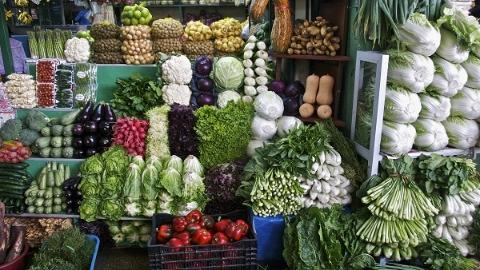 寒潮来临,蔬菜供应充足菜价平稳