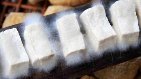 七夕会·美食 毛豆腐,依稀熟悉的味道