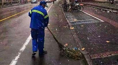绿化市容部门多措并举应对雨雪天气
