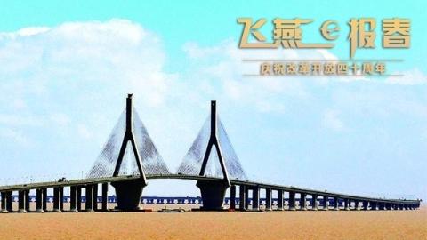 飞燕报春|东海大桥:一桥飞架海天间