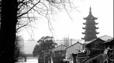 记忆中的泗泾下塘街,极具江南水乡民居风貌