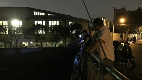 """垂钓者蜂拥而至  杨浦区定海桥竟变身""""钓鱼场"""""""