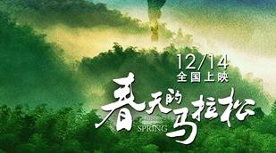 简评电影《春天的马拉松》:读懂中国,从土地开始