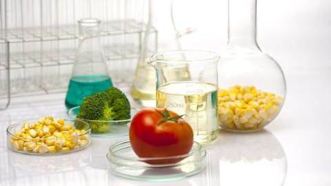 农业部食堂因TA引来争议!你家的厨房里允许TA的存在吗?