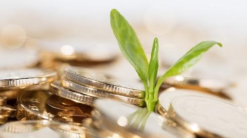 分析师观点 | 保险行业怎么看,行业风险从哪里来