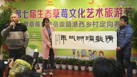崇明第七届生态草莓文化艺术旅游节开幕