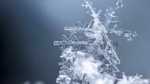 丹丹看天气 |明天申城或迎今冬第二场雪  跨年冷空气给申城急速冷冻