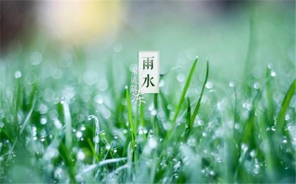 今日雨水:唤醒一季春