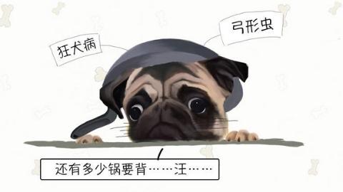 瑞犬迎春⑦这些病真是我的错?汪星人:这锅不能只让我背!