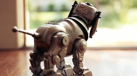 """瑞犬迎春⑧""""机器狗""""真厉害 陪跑、下棋、取快递都是小case"""