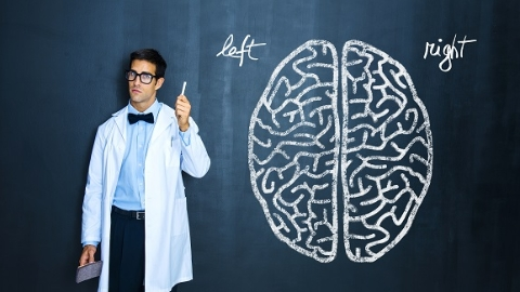 """认识脑保护脑模拟脑!一张神奇的脑计划探秘""""地图""""正在上海加紧布局"""