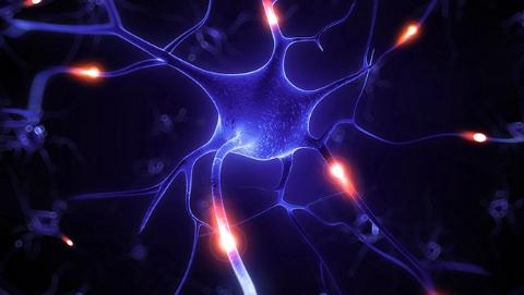 中美学者为治疗阿尔茨海默病提供新思路
