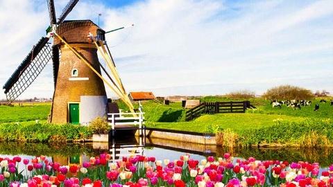 留学与移民 | 荷兰融入考试越来越难,5月起写作又有新变化