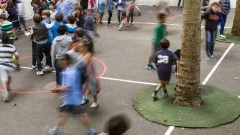 老鼠无处不在,巴黎小学师生健康受威胁