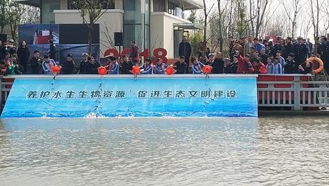 世界水日:上海水生生物增殖放流活动上午举行 20万尾鱼苗放归自然