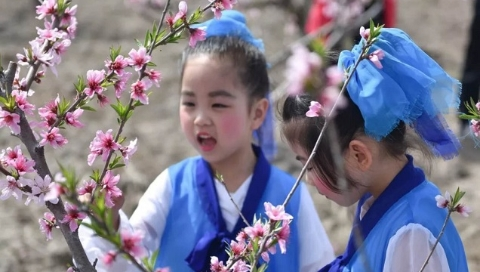 青浦徐泾启动市民修身活动 桃花源中品传统文化魅力