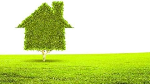 """光催化让""""水泥森林""""变绿色森林 华理团队研究成果解决""""装修毒气"""""""