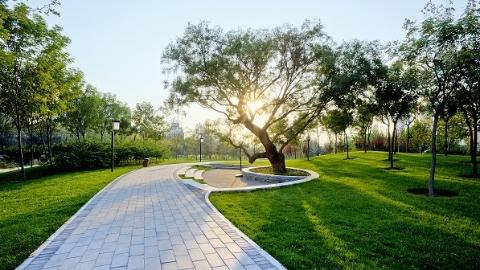 今年上海延长开放公园数量达195座 比去年增加近一半