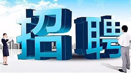 松江经济技术开发区招聘纪检招商工作人员